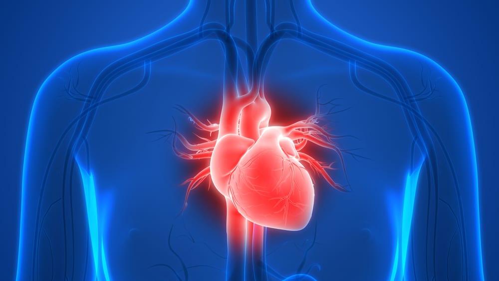sakit dada sebelah kiri akibat kelainan otot jantung.