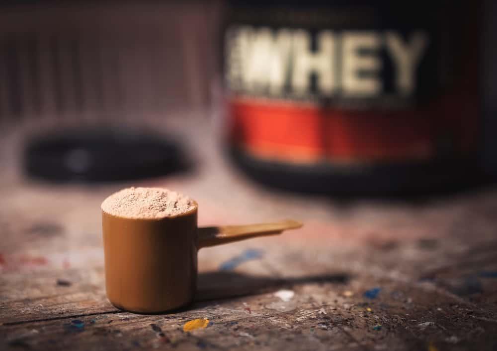 fungsi whey protein